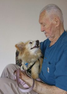 How Do We Support Older Adults and Pets?